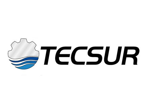 Tecsur - WDesign - Diseño Web Profesional